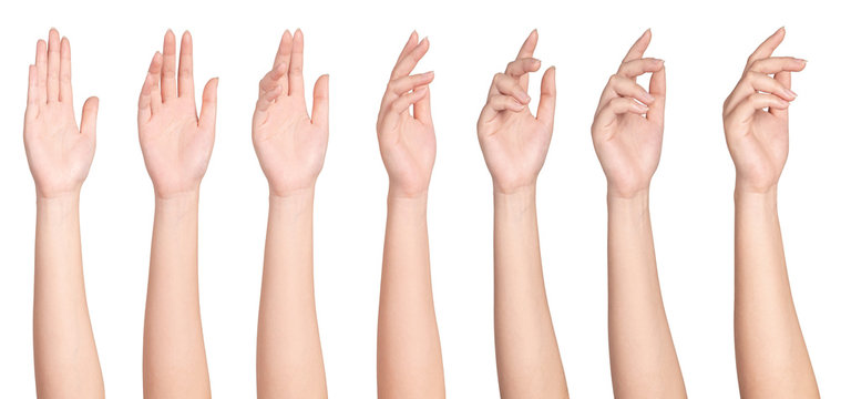 Set of woman hands with fingers isolated on white .