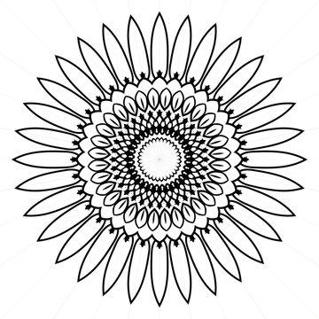 Elegant premium ornament vector logotype symbol