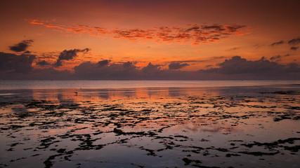 Papiers peints Zanzibar Indian Ocean at dawn off the coast of Zanzibar, Tanzania
