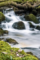 Tuinposter Bos rivier Vertical shot of a waterfall flowing splashing to the rocks