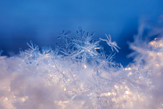 Snowflakes close-up. Macro photo. The concept of winter, cold, beauty of nature. Copy space..