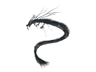 watercolor ink black brush asia dragon isolated on white background.