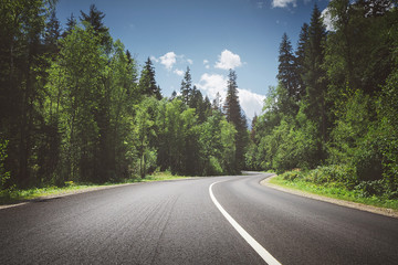 country road through forest. summer. Fotomurales