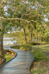 A boardwalk in a lush coastanl area in Queensland, Australia.