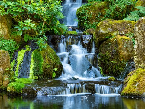 Pacific Northwest Waterfall and greenery