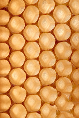 Background made of wax honeycomb filled with organic honey. Macro photo. Flat lay