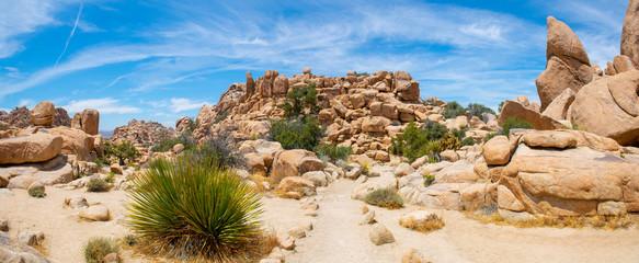 Mountain landscape panorama in Joshua Tree National Park near Yucca Valley, California CA, USA. Fotomurales