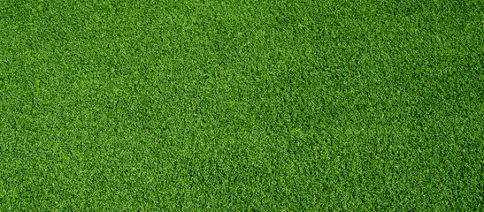 Garden Poster Green green grass background, football field