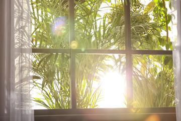 Beautiful view through window on garden in morning Fotobehang