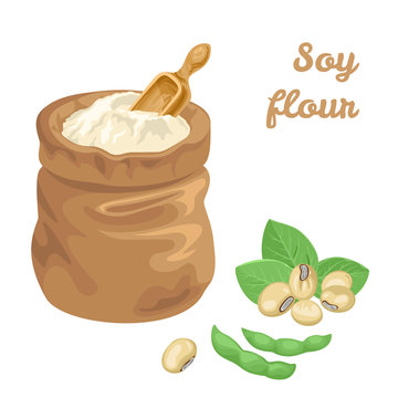 Soy flour in bag and wooden scoop isolated on white background. Green Soya pods and leaves. Vector illustration of legumes in cartoon simple flat style.