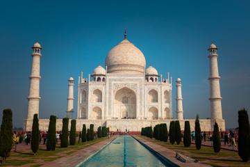 Taj Mahal monument in Agra, India. Fototapete