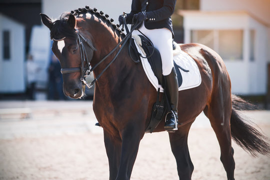 A Bay horse with a rider in the saddle performs at a dressage competition in front of the judges ' booth on a Sunny day.