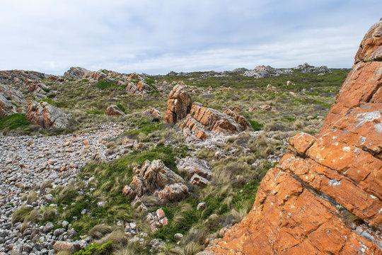 West Point State Reserve landscape in Tasmania, Australia