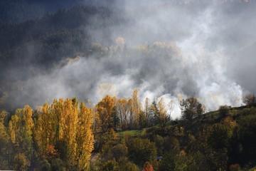 Foto op Canvas Donkergrijs Autumn mountain forest village landscape. Mountain village in autumn. Mountain forest village in autumn. Autumn mountain village view
