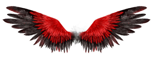 Beautiful magic red black wings drawn with watercolor effect Wall mural