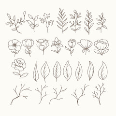 Floral Set line art bundle