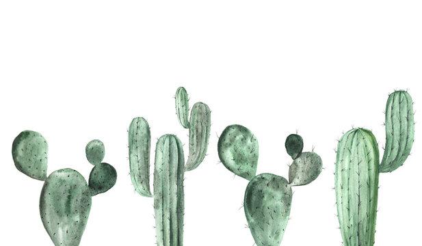 Watercolor green cactus collection