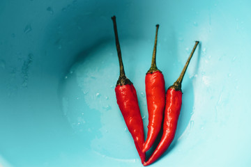 Canvas Prints Hot chili peppers Red chilly peppers in blue bowl