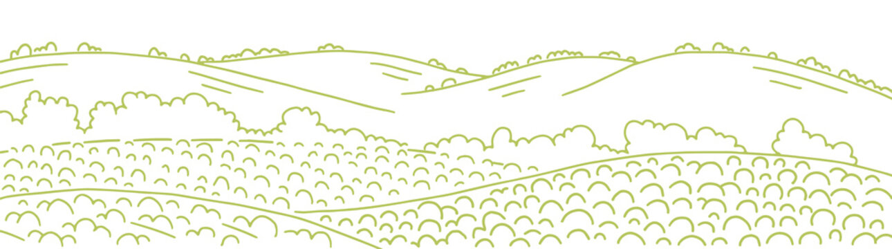 Field landscape. Growing vegetables agricultural garden farming. Rural countryside landscape. Vector hand-drawn sketch line drawing.