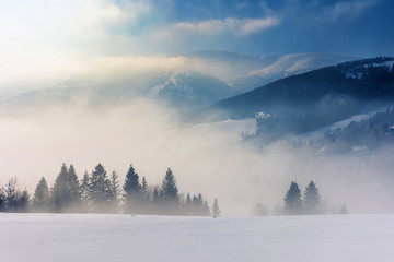 blizzard in mountains. magic scenery with clouds and fog on a sunny winter day. trees in mist on a snow covered meadow. borzhava ridge in the distance. cold weather approaching
