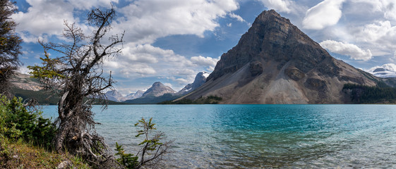 Wall Mural - Bow Lake, Icefield Parkway, Banff National Park, Alberta, Canada