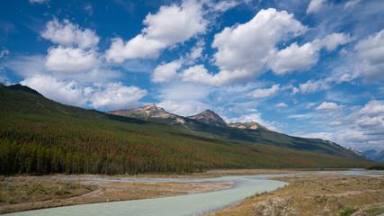 Wall Mural - Athabasca River, Jasper National Park, Rocky Mountains, Alberta, Canada
