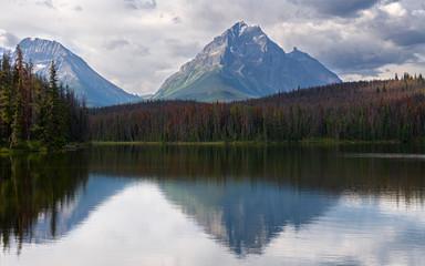 Wall Mural - Leach Lake, Jasper National Park, Alberta, Canada
