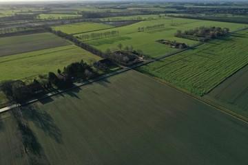 grüne Wiese Felder Landschaft