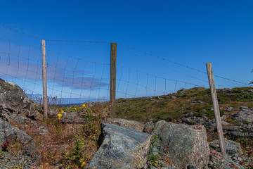 Sheep fence in Rovaer, Norway.