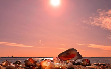 Sunset at sea , beautiful nature  Seascape skyline  Harbor water wave reflection  seashell beach  skyscape tropical   sea stone birds on sky  light sun boat  in port colorful  pink sunlight summer ho