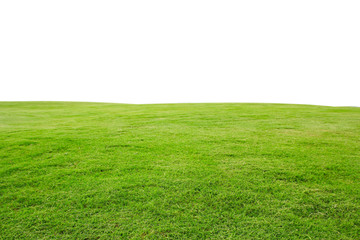 Foto auf AluDibond Gras fresh green grass lawn isolated on white background