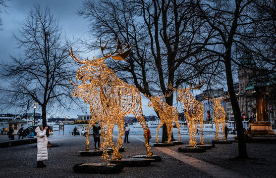 A woman takes pictures of Christmas light installations formed as elks at the Raoul Wallenberg Square in central Stockholm