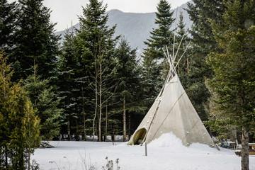 Tipi d'indien d'Amérique dans une forêt en Amérique du Nord