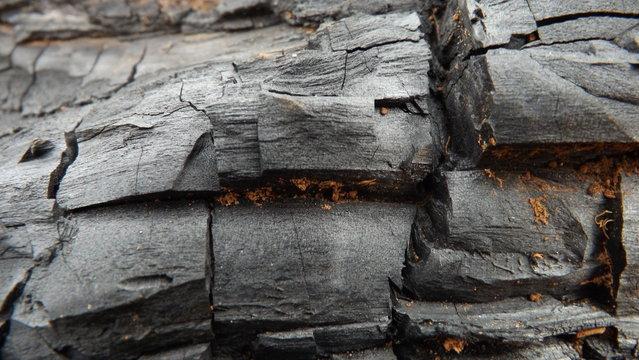 O carvão marca a transição entre a cor exuberante de um fogo pairando sobre a madeira e as frações de cinzas que sujam os dedos curiosos.