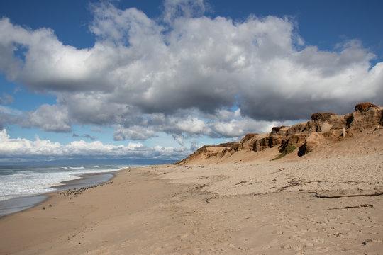 Sand dunes at Marina State Beach Monterey County California