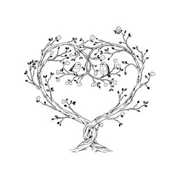 Trees intertwined in heart shape with birds, hand drawn illustration in vintage style.