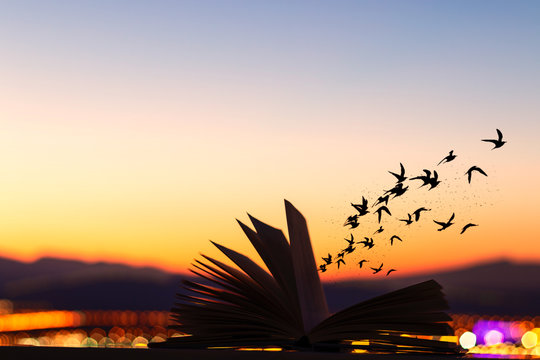 silhouette of a flock of burds burst out og a fantasy book at sunset with the mountains in the backround.