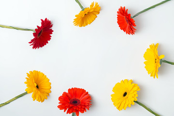 Papiers peints Gerbera Bright red and yellow gerbera flowers arranged into a circle frame on the white background,