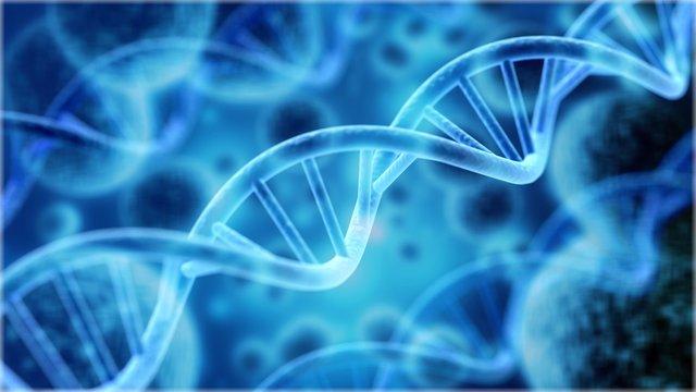 Cells under human DNA system illustration