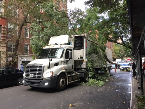 Truck crashes into tree in New York City