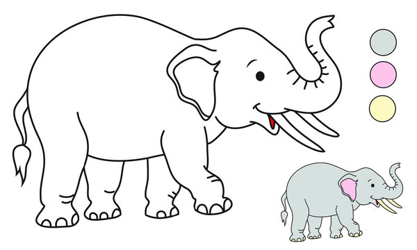 Baby Elephant Outline Photos Royalty Free Images Graphics Vectors Videos Adobe Stock