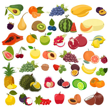 Set of fruits isolated on a white background. Vector graphics.