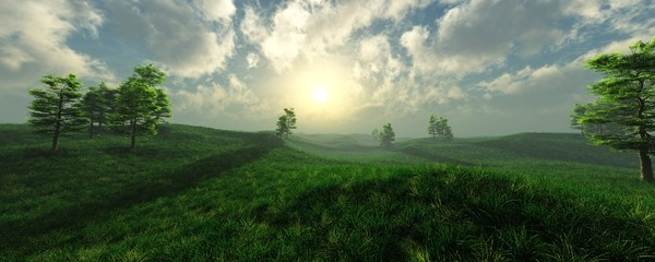 Beautiful green grass meadow in the fog at sunrise, 3D rendering.