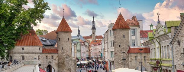 beautiful  photos of Tallinn Fototapete