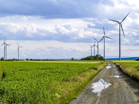 Windpark Parndorf, Feldweg, Österreich, Burgenland, Nordburgenl