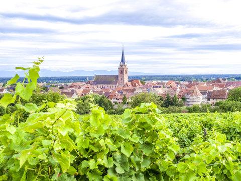 Weinbauregion Elsass, Alsace, Frankreich, Elsass, Bergheim
