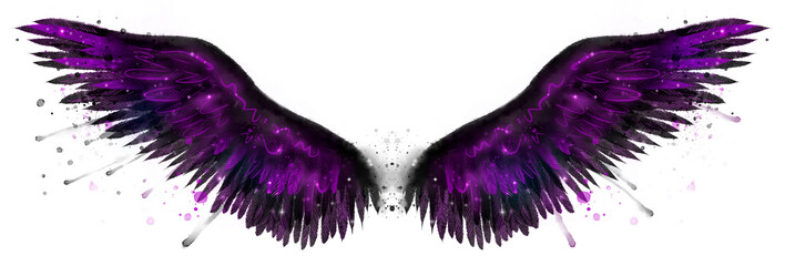 Beautiful magic black purple watercolor wings Wall mural
