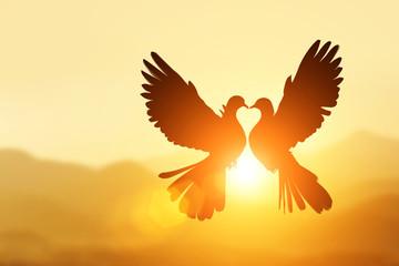 Canvas Afdrukken  - silhouette of bird in heart shape on pastel background and Valentine's Day