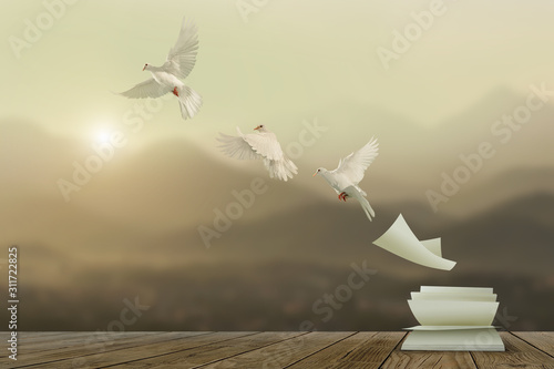 Canvas Prints White pigeons fly out of books that are flicked by the wind in beautiful light on sunset background.freedom concept and international day of peace