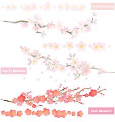 梅の花、桜、桃の花 と ブラシ